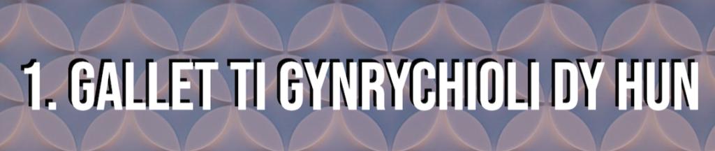Teitl Cynrychiolaeth ar gyfer erthygl Hunaniaeth Ar-lein