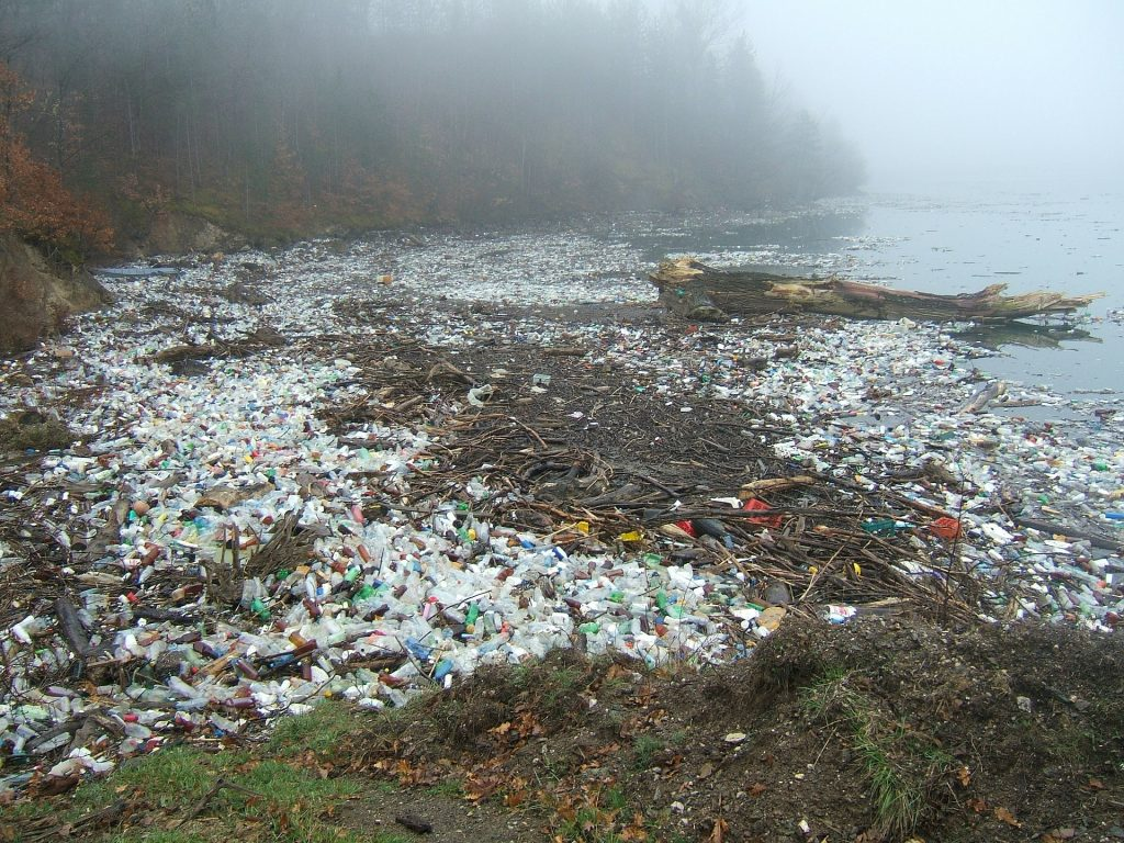 Plastic in the ocean Plastic Pollution article
