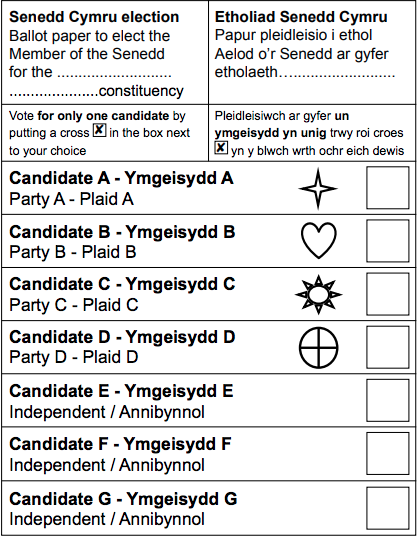 Election paper - constituency member